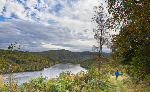 Wildnis-Trail-Eifel-1
